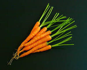 Picture of a bunch of carrots