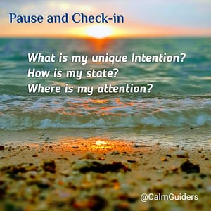 Pause and Check-in