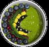 skini shake with berries small